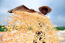 改革再出发:农业有奔头 农民有盼头 农村有看头